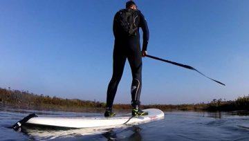 Paddle to Scolt Head Island